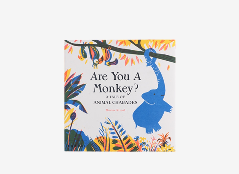 PHAIDON / Are You A Monkey